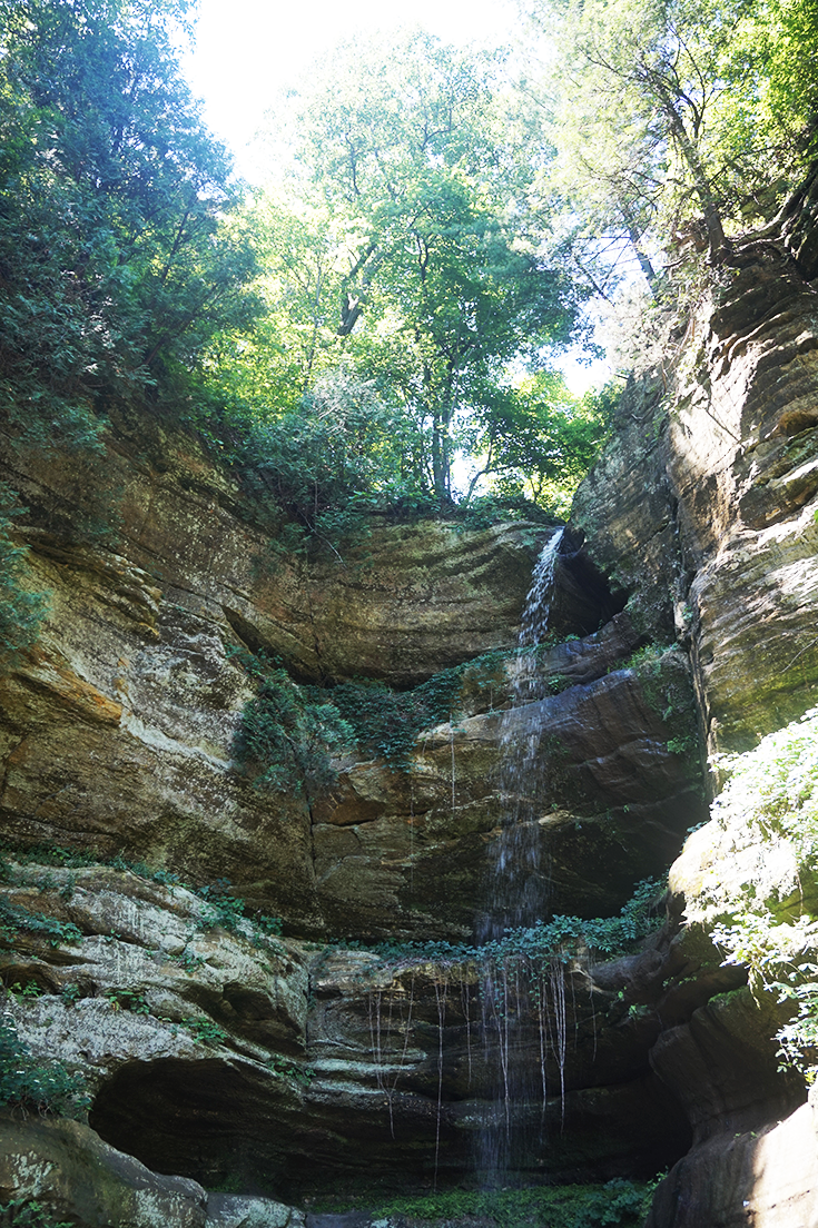 Starved Rock State Park | Wildcat Canyon | Utica, IL | Park Review
