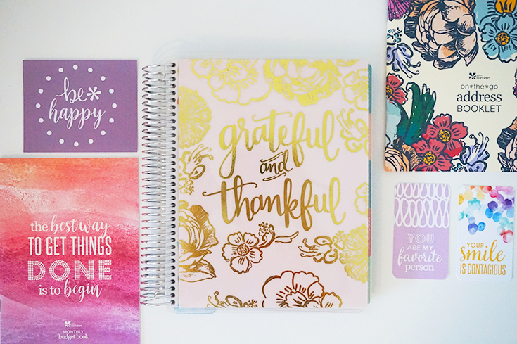 Erin Condren LifePlanner: How to Organize Your Life - Ali in Bloom
